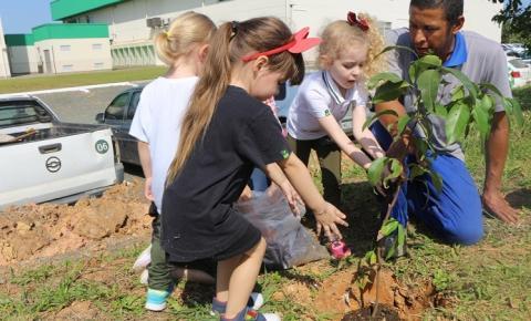 Turmas do Infantil colocam a mão na terra na hora de plantar árvores