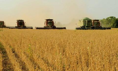 Associação pede criação de fundo para recompensar produtores que soja que preservem o Cerrado