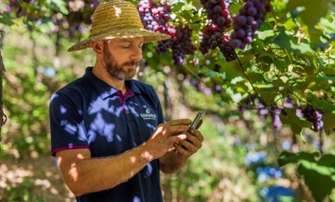 Aplicativo auxilia produtores na gestão da propriedade rural
