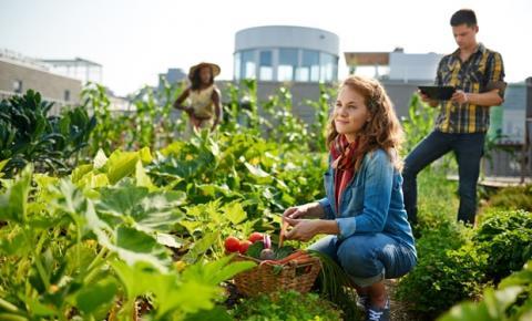 Bayer e Farsul firmam parceria para desenvolver jovens talentos no agronegócio