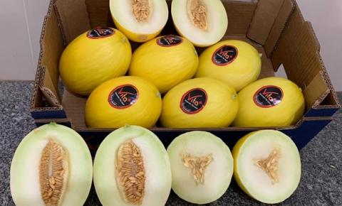 Contrato inédito garante exportação de melão para a China por pelo menos 5 anos